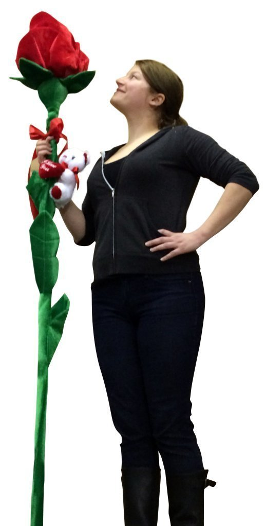 Giant Stuffed Rose for Girlfriend