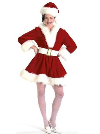 young mrs santa claus costume for women
