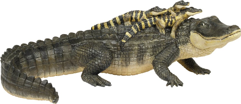 Alligator Toy with Babies
